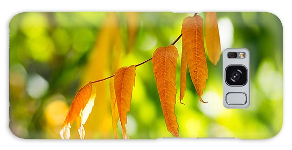 Turning Autumn Galaxy Case by Aaron Aldrich