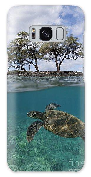 Turtle At Makena Landing Galaxy Case
