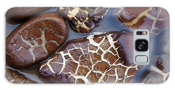 Turtle Or Stone Galaxy Case