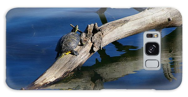 Turtle Sun Galaxy Case by Tannis  Baldwin