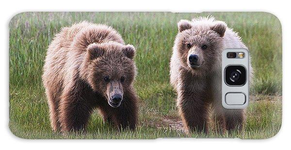 Twin Bear Cubs Galaxy Case