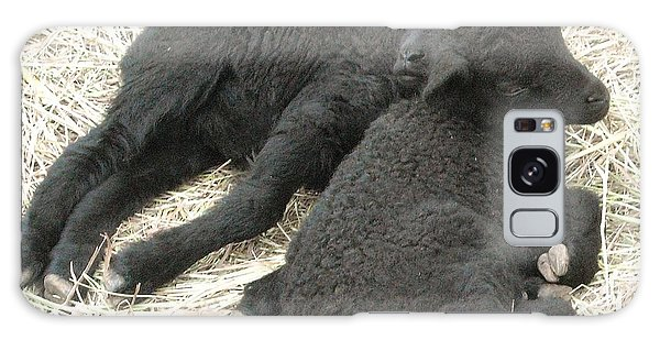 Twin Black Lambs Galaxy Case by Cathy Long