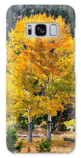 Twin Fall Trees Galaxy Case