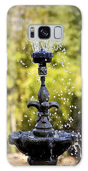 Twin Oaks Garden Fountain Galaxy Case