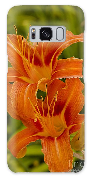 Twin Orange Trumpet Lilies Galaxy Case by MaryJane Armstrong