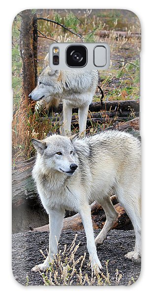 Twin Wolves Galaxy Case by Athena Mckinzie