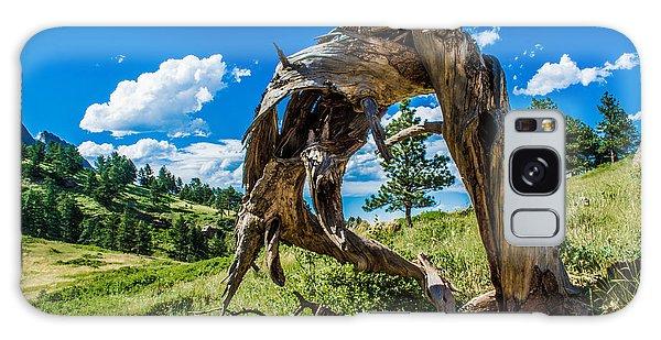 Twisted Pine Galaxy Case by Rhys Arithson