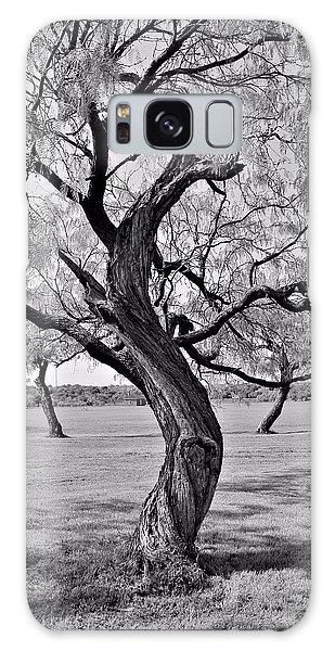 Twisted Tree Galaxy Case by Elizabeth Budd