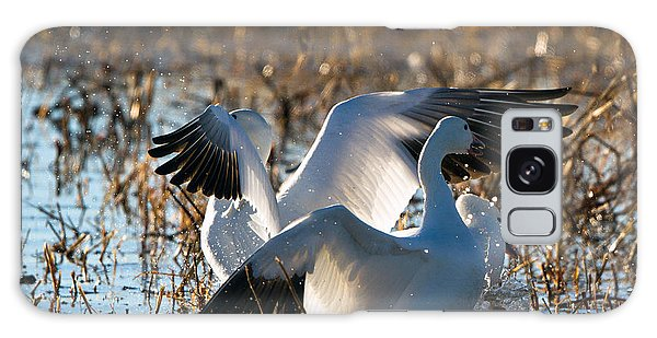 Two Backlit Snow Geese Galaxy Case