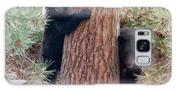 Two Bears Galaxy Case