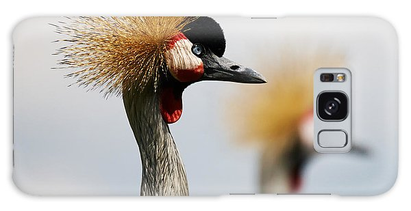 Two Black Crowned Cranes Galaxy Case