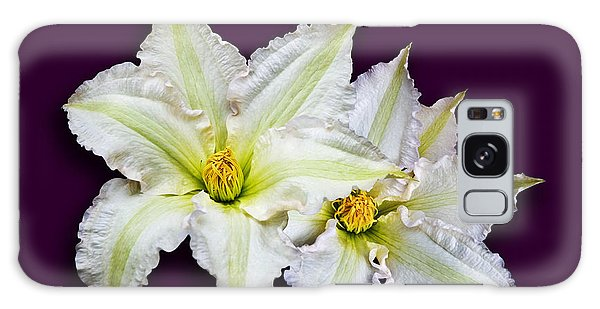 Two Clematis Flowers On Purple Galaxy Case