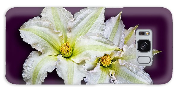 Two Clematis Flowers On Purple Galaxy Case by Jane McIlroy