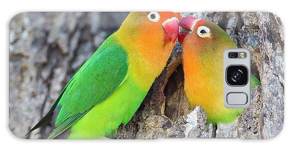 Lovebird Galaxy S8 Case - Two Fischer's Lovebirds (agapornis by James Heupel