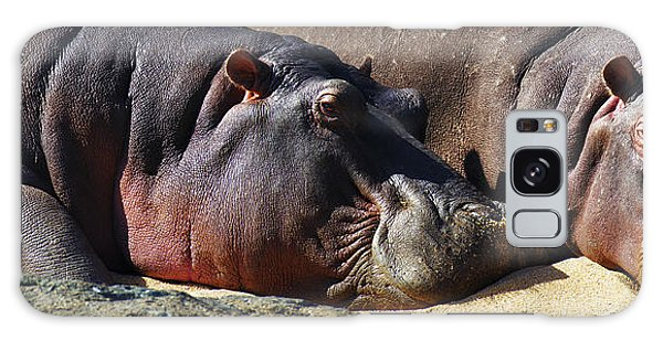 Two Hippos Sleeping On Riverbank Galaxy Case