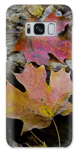 Two Leaves Galaxy Case by Larry Bohlin