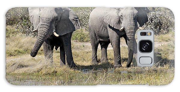 Two Male Elephants Okavango Delta Galaxy Case