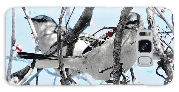 Two Mocking Birds Galaxy Case