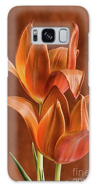 Two Orange Red Tulips Entwined Galaxy Case by Linda Matlow