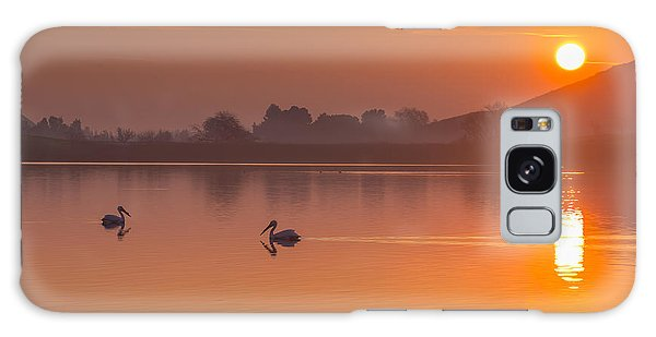 Two Pelicans At Sunrise Galaxy Case