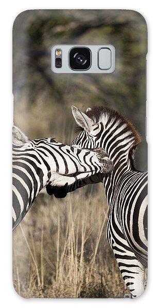 Two Plains Zebra Botswana Galaxy Case