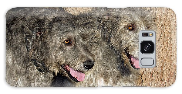 Sighthound Galaxy Case - Two Purebred Irish Wolfhounds By A Tree by Piperanne Worcester