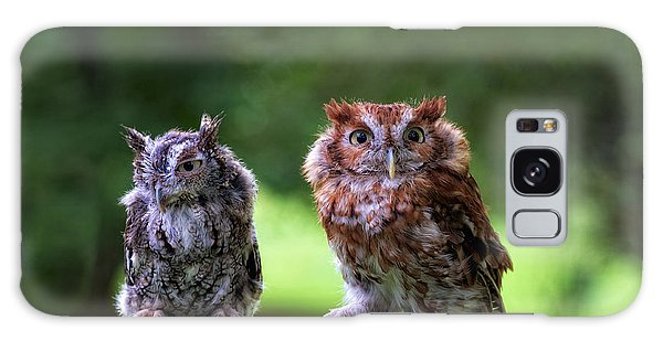 Two Screech Owls Galaxy Case