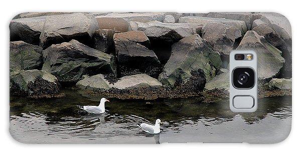 Two Seagulls Galaxy Case