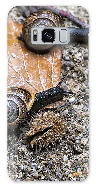 Two Snails Competing With Each Other On An Autumn Background Galaxy Case