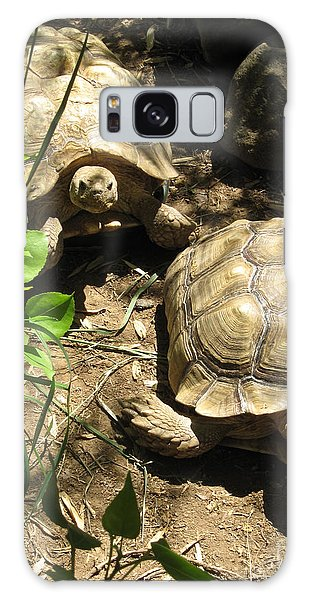 Two Tortoises Galaxy Case by CML Brown