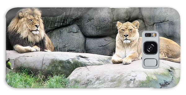 Two Tranquil Lions Galaxy Case
