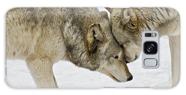 Two Wolves In  A Staredown Galaxy Case by Gary Slawsky