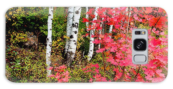 Foliage Galaxy Case - Uinta Colors by Chad Dutson