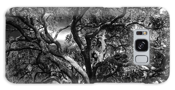 Under A Tree In Black And White Galaxy Case