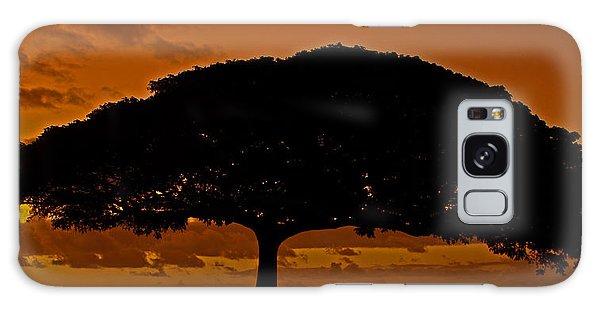 Under The Monkeypod Tree Galaxy Case