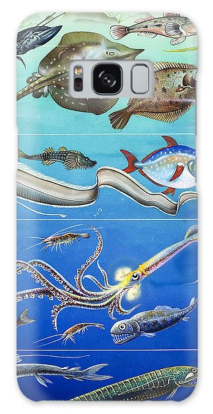Underwater Creatures Montage Galaxy Case by English School