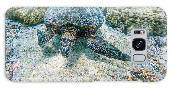 Swimming Turtle Galaxy Case by Denise Bird