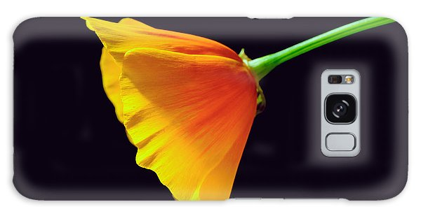 Mexican Gold Poppy Galaxy Case