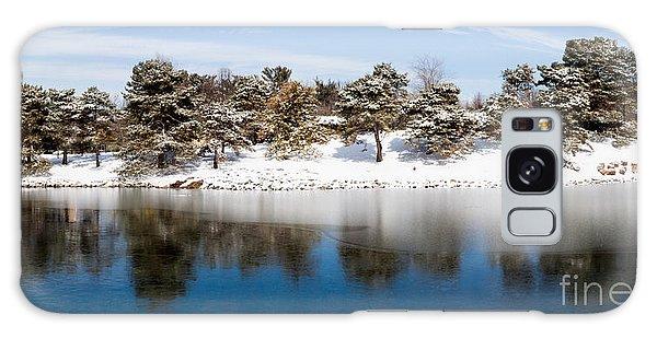 Urban Pond In Snow Galaxy Case