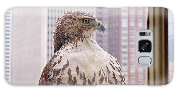 Philadelphia Galaxy Case - Urban Red-tailed Hawk by Rona Black
