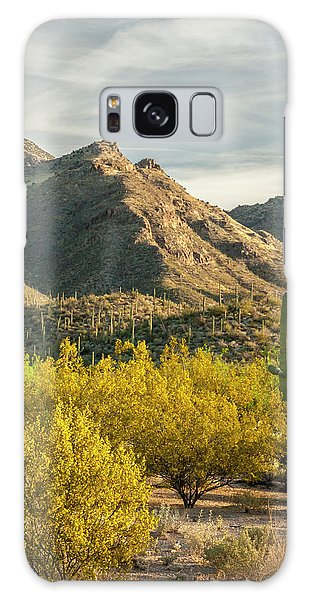 Cacti Galaxy Case - Usa, Arizona, Sabino Canyon Recreation by Jaynes Gallery
