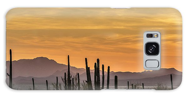 Usa, Arizona, Tucson Mountain Park Galaxy S8 Case