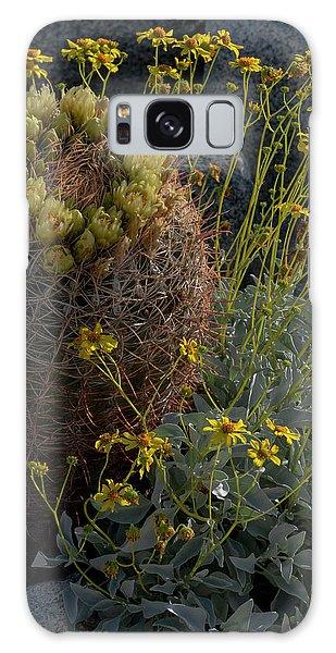 Desert Flora Galaxy Case - Usa, California Brittlebush by Judith Zimmerman