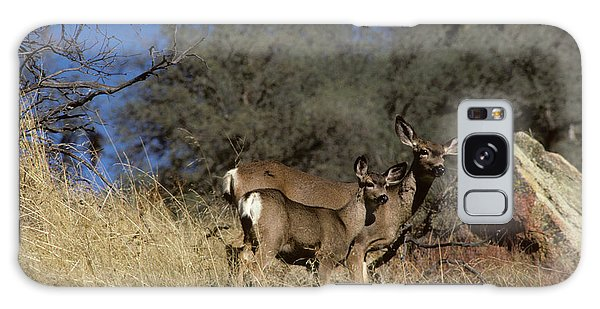Kings Canyon Galaxy Case - Usa, California, Mule Deer, Doe by Gerry Reynolds