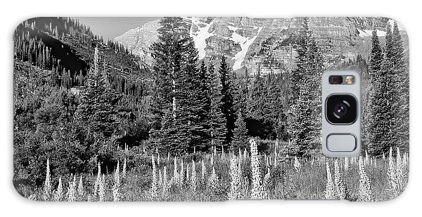 White Mountain National Forest Galaxy Case - Usa, Colorado, White Mountain National by Jaynes Gallery