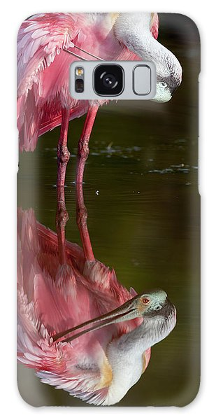 Usa, Florida, Everglades National Park Galaxy Case