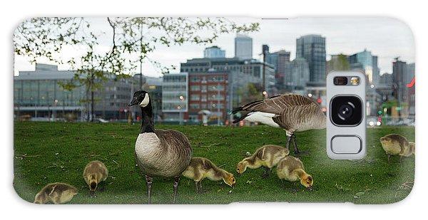 Gosling Galaxy Case - Usa, Washington, Seattle, South Lake by Rick A Brown