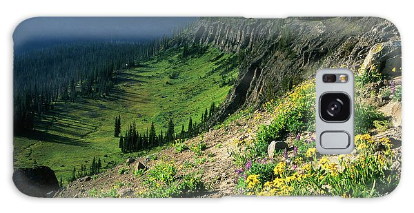 Teton Range Galaxy Case - Usa, Wyoming, Wildflowers by Scott T. Smith