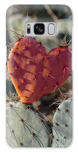 Valentine Prickly Pear Cactus Galaxy Case