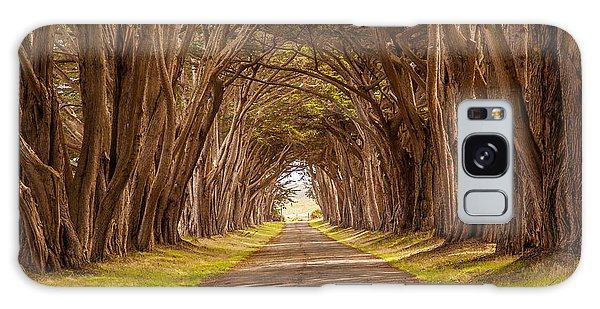 Valiant Trees Galaxy Case